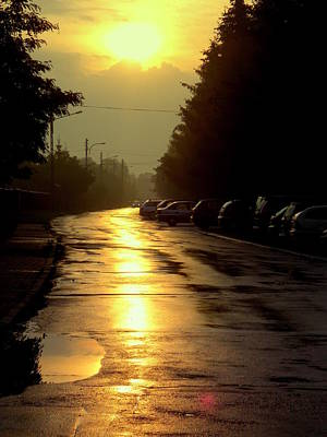 Photograph - After Rain by Henryk Gorecki
