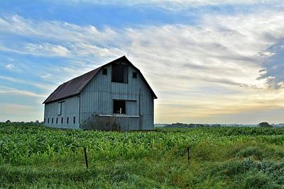 Photograph - After Summer Rains 2 by Bonfire Photography