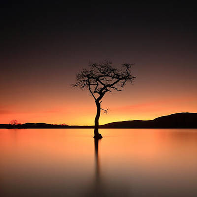 Photograph - After Sunset by Grant Glendinning