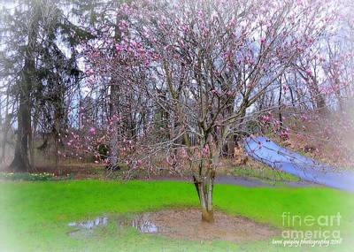 Photograph - After The April Rain by Tami Quigley