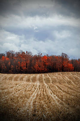 Photograph - After The Harvest by Brooke T Ryan