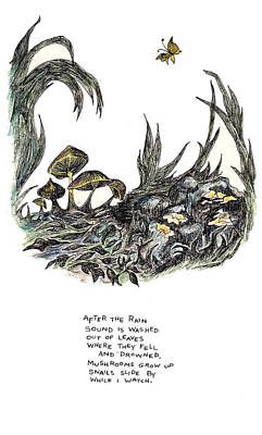 After The Rain Art Print by Lily Hymen
