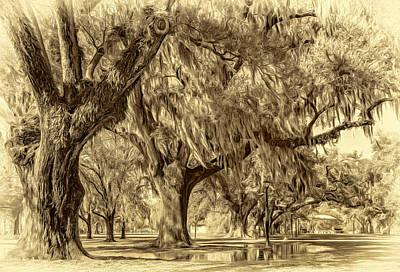 Trees Photograph - After The Rain - Sepia by Steve Harrington