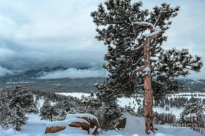 Photograph - After The Snow - 0629 by Jerry Owens