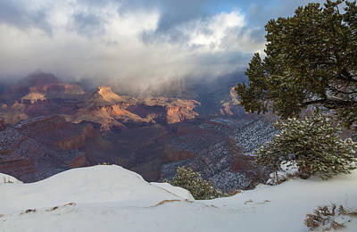 Photograph - After The Snow Storm by Jonathan Nguyen