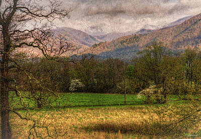 Photograph - After The Spring Rain by Rebecca Hiatt