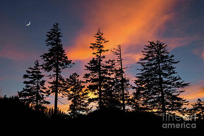 Photograph - Afterburn Moonrise  by Anthony Heflin