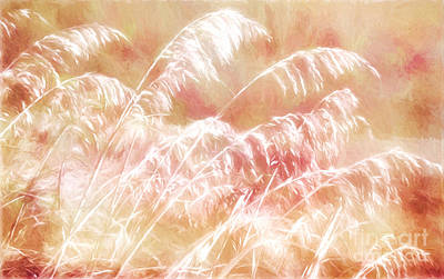 Sand Dunes Painting - Afterglow II by Dan Carmichael