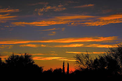 Photograph - Afterglow Silhouette H49 by Mark Myhaver