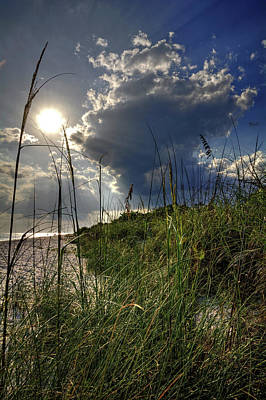 Photograph - Afternoon At A Sanibel Dune by Chrystal Mimbs