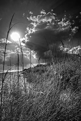 Photograph - Afternoon At A Sanibel Dune In Blank And White by Chrystal Mimbs