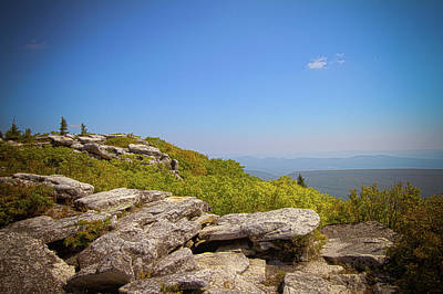 Photograph - Afternoon At Dolly Sods by Daniel Houghton