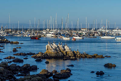 Photograph - Afternoon At The Breakwater by Derek Dean