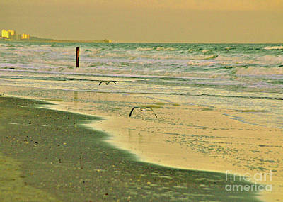 Photograph - Afternoon Beach Reflections 5 by Lydia Holly