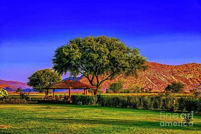 Photograph - Afternoon Garden by Rick Bragan