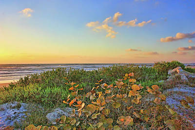 Photograph - Afternoon Glow by HH Photography of Florida
