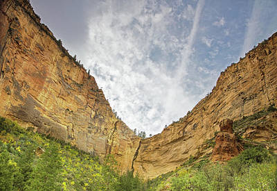 Boynton Canyon Photograph - Afternoon In Boynton Canyon by Kunal Mehra