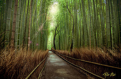 Afternoon In The Bamboo Art Print