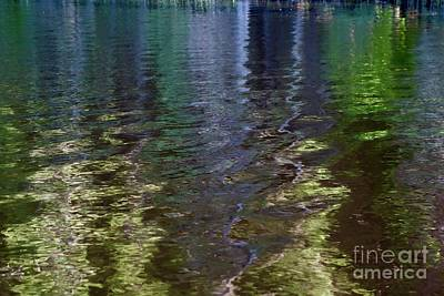 Photograph - Afternoon Reflections by Sandra Updyke