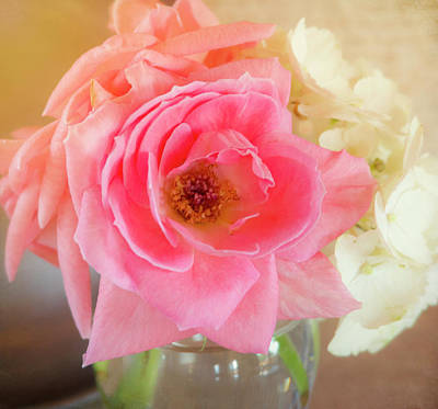 Photograph - Afternoon Rose By Mike-hope by Michael Hope
