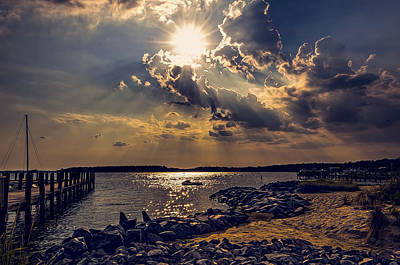 Photograph - Afternoon Sun by Maria Coulson