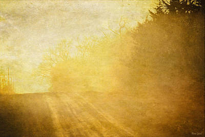 Photograph - Afternoon Sunshine Country Road by Anna Louise