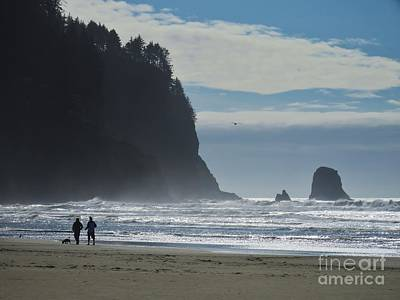 Photograph - Cape Meares by Michele Penner