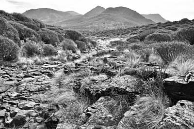 Photograph - Agaete Gran Canaria Monochrome by Marek Stepan