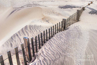 Photograph - Against The Wind - Outer Banks by Dan Carmichael