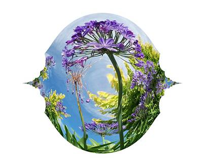 Digital Art - Agapanthus Dance by Nancy Pauling