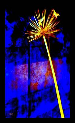 Digital Art - Agapanthus Digital Glory by VIVA Anderson
