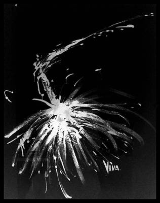 Drawing - Agapanthus Silhouette by VIVA Anderson