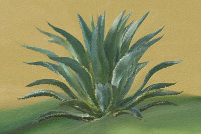 Graphics Painting - Agave by Di Designs