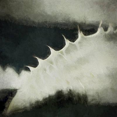 Spikes Digital Art - Agave Impression Two by Carol Leigh