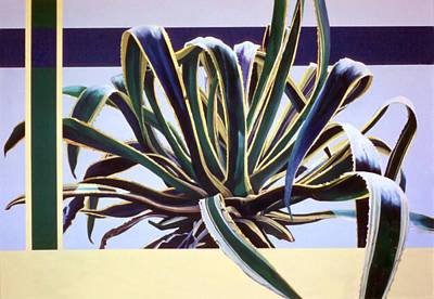 Agave Marginata - Painting Art Print by Caren Keyser