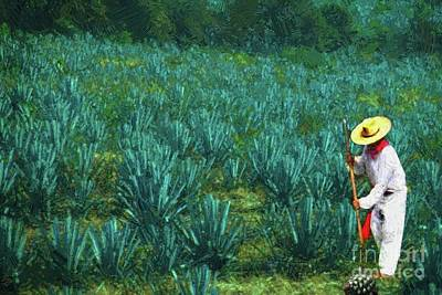 Photograph - Agave Worker by John Kolenberg