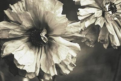 Age Of Change... Art Print by The Art Of Marilyn Ridoutt-Greene