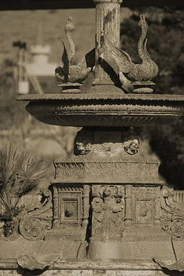 Photograph - Aged And Worn Swan Statues On Rustic Cast Fountain by Colleen Cornelius