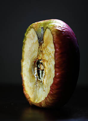 Photograph - Aged Apple by Hyuntae Kim