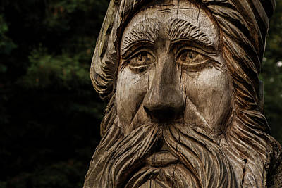 Photograph - Aged In Wood by Stewart Scott