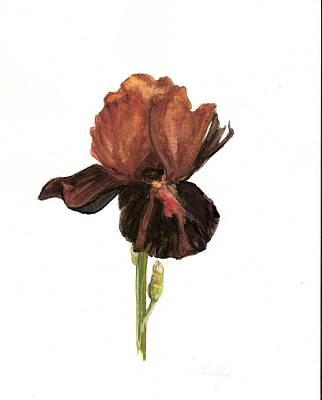 Aged Art Print by Susan Tilley