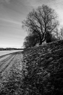 Photograph - Ages by Matti Ollikainen