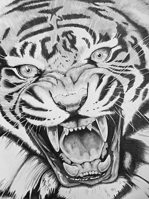 Drawing - Aggression by Joseph Palotas