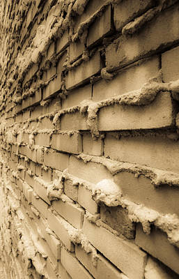 Aging Brick Wall Art Print by Patrick  Flynn