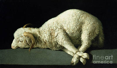 Tied-up Painting - Agnus Dei by Francisco de Zurbaran