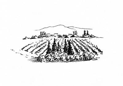 Wine Drawings - Agricultural Landscape by Masha Batkova