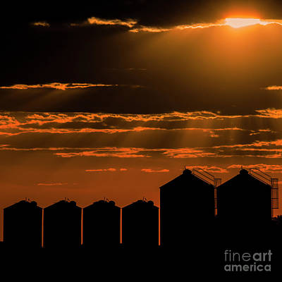 Photograph - Agricultural Silos, Storage And Drying For Grains. by Rob D