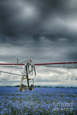 Photograph - Agriculture Sprinkler by Bryan Mullennix