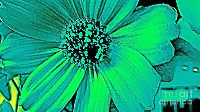 Photograph - Aqua Blossom by Rachel Hannah