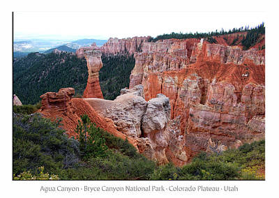 Photograph - Agua Canyon Bryce Canyon Utah 02 Text by Thomas Woolworth
